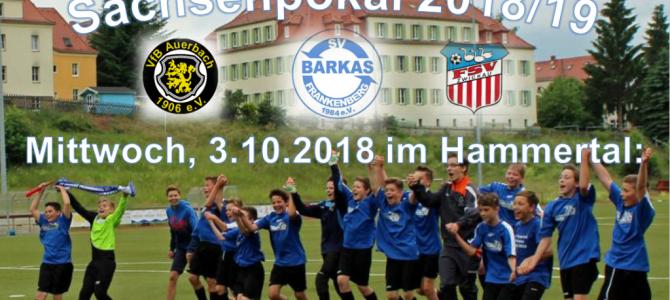 +++ Spielvorschau sächsischer Landespokal +++